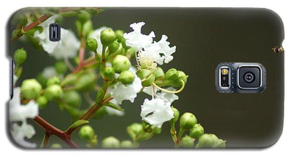Crape Myrtle Galaxy S5 Case