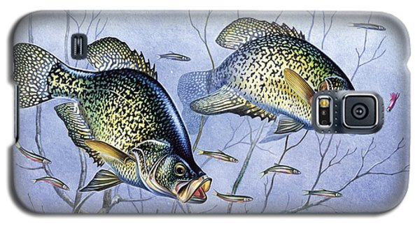 Crappie Brush Pile Galaxy S5 Case by JQ Licensing