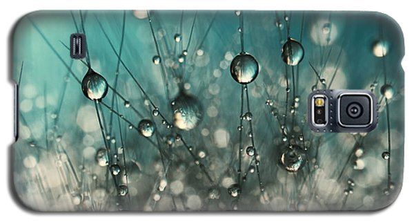 Galaxy S5 Case featuring the photograph Crazy Cactus Sparkles by Sharon Johnstone