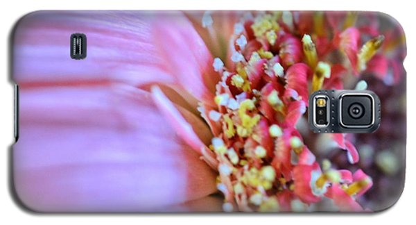 Galaxy S5 Case featuring the photograph Crazy Enough by Penni D'Aulerio