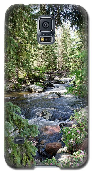 Crazy Woman Creek Galaxy S5 Case