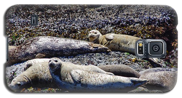 Creatures Comfortable Galaxy S5 Case
