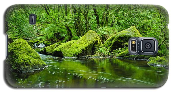 Creek In The Woods Galaxy S5 Case