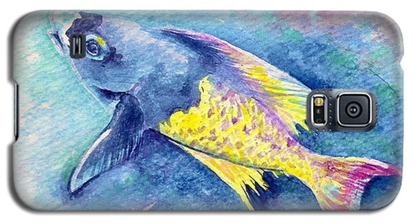Creole Wrasse Galaxy S5 Case