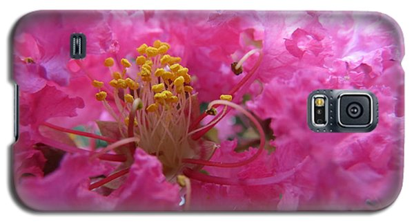 Crepe Myrtle In The Middle Galaxy S5 Case