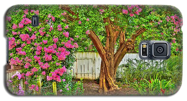 Galaxy S5 Case featuring the photograph Crepe Myrtle In Wiliamsburg Garden by Jerry Gammon