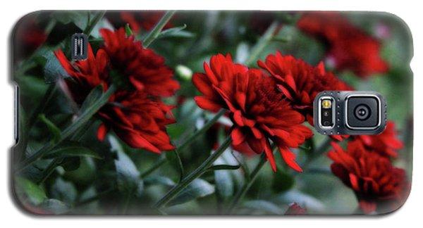 Crimson And Clover Galaxy S5 Case