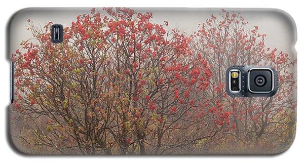 Crimson Fog Galaxy S5 Case by Melinda Ledsome