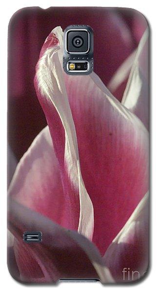 crimson Tulip Galaxy S5 Case by Rudi Prott