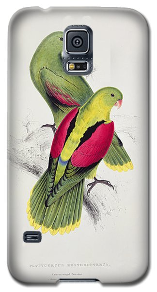 Parakeet Galaxy S5 Case - Crimson Winged Parakeet by Edward Lear