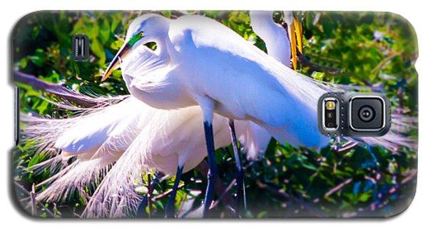 Criss-cross Egrets Galaxy S5 Case
