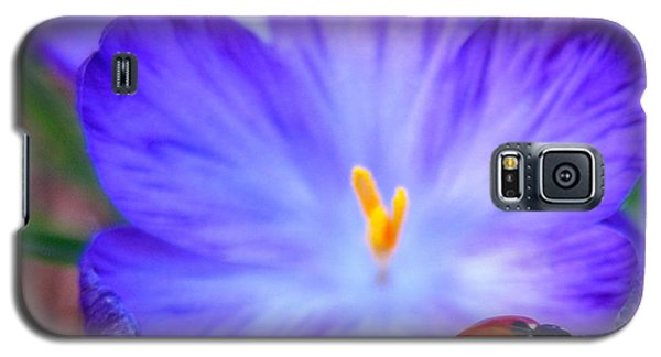 Crocus Flower With Ladybug Galaxy S5 Case