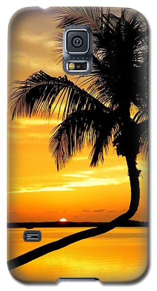 Crooked Palm Galaxy S5 Case