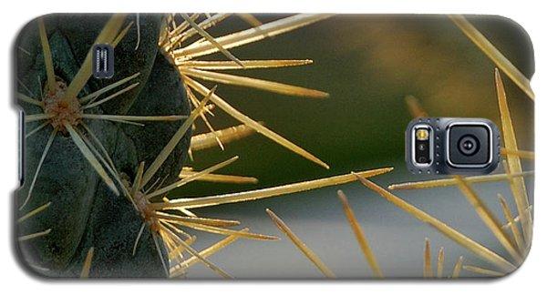 Cross Swords  Galaxy S5 Case