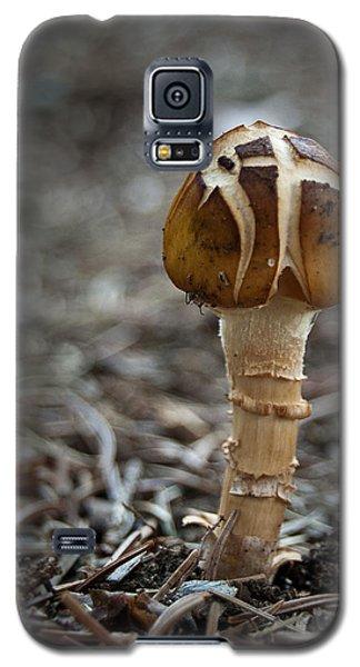 Crosstop Galaxy S5 Case