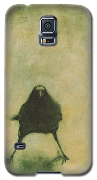 Blackbird Galaxy S5 Case - Crow 6 by David Ladmore
