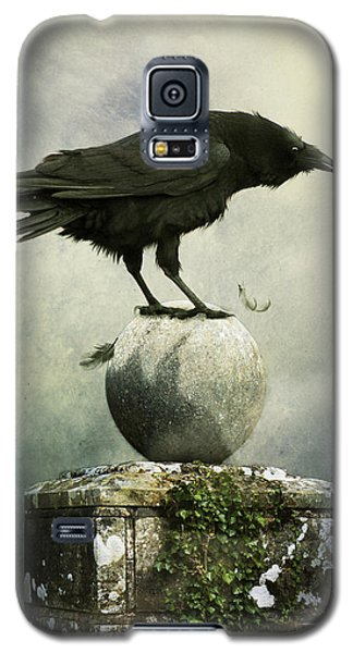 Galaxy S5 Case featuring the photograph Crow  by Ethiriel  Photography