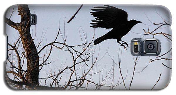 Crow In Flight Galaxy S5 Case