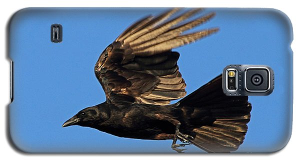 Galaxy S5 Case featuring the photograph Crow In Flight by Meg Rousher
