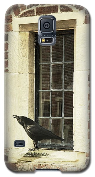 Galaxy S5 Case featuring the photograph Crow On Window Sill by Ethiriel  Photography