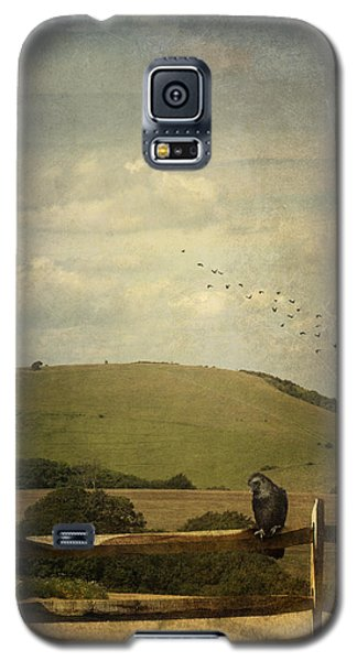 Galaxy S5 Case featuring the photograph Crow Sitting On A Fence by Ethiriel  Photography