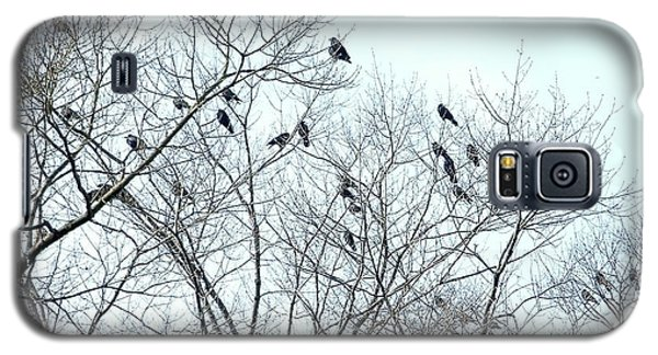 Crow Trees Galaxy S5 Case by Marc Philippe Joly