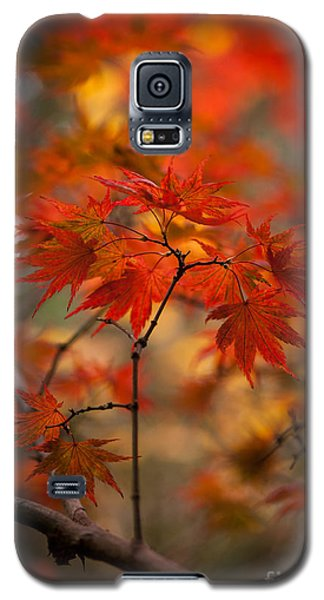Crown Of Fire Galaxy S5 Case