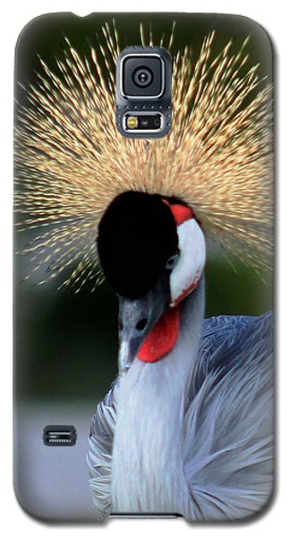 Crowned Galaxy S5 Case