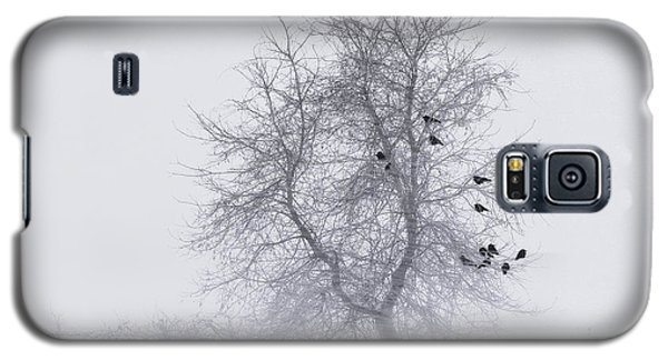 Crows On Tree In Winter Snow Storm Galaxy S5 Case