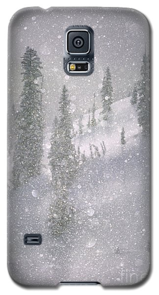 Crystalized Snowflakes Falling While Being Backlit By The Sun Galaxy S5 Case