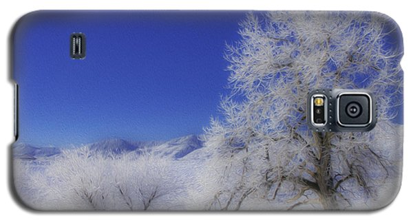Galaxy S5 Case featuring the photograph Crystalized Valley by Kristal Kraft