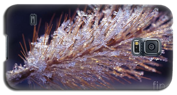 Crystalline Beauty Galaxy S5 Case by Julie Clements
