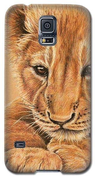 cub Galaxy S5 Case by Heidi Kriel