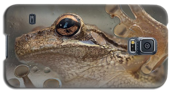 Cuban Treefrog Galaxy S5 Case