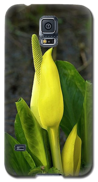 Cuckoo Pint (arum Maculatum) Galaxy S5 Case