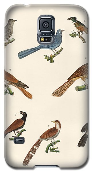 Cuckoos From Various Countries Galaxy S5 Case by Splendid Art Prints