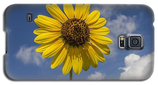 Cucumberleaf Sunflower Galaxy S5 Case