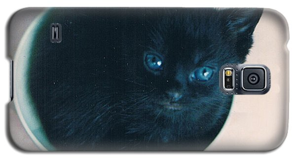 Cup O'kitty Galaxy S5 Case by Seth Weaver