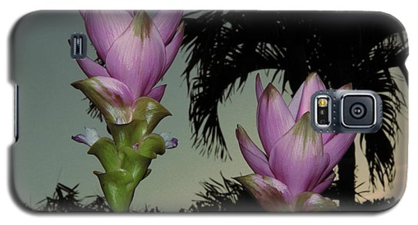 Galaxy S5 Case featuring the photograph Curcuma Hybrid Flowers by Greg Allore