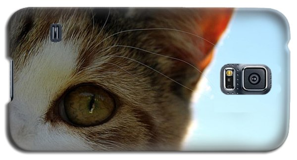 Curious Cat Galaxy S5 Case