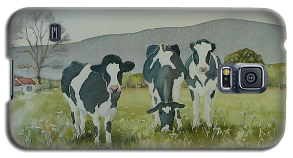 Galaxy S5 Case featuring the painting Curious Cows by Jo Appleby
