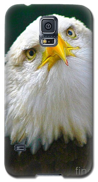Curious Eagle Galaxy S5 Case