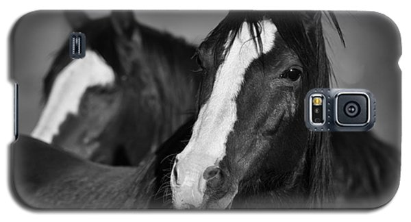 Curious Horses Galaxy S5 Case