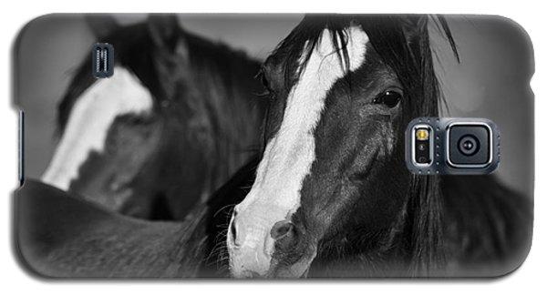 Curious Horses Galaxy S5 Case by Ana V Ramirez