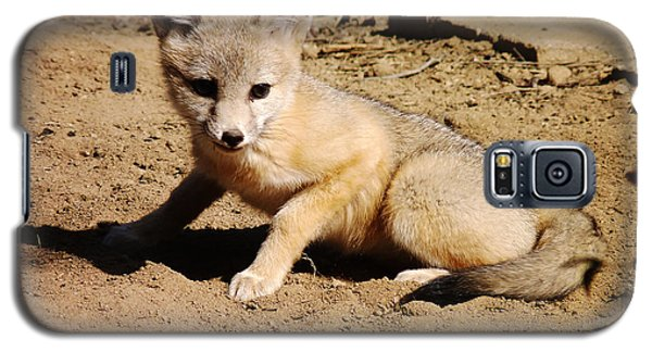 Curious Kit Fox Galaxy S5 Case