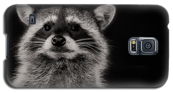Curious Raccoon Galaxy S5 Case by Linda Villers