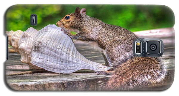 Galaxy S5 Case featuring the photograph Curious Squirrel by Rob Sellers
