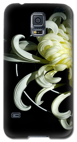 Curling Mum Galaxy S5 Case