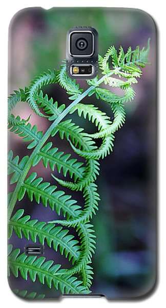 Galaxy S5 Case featuring the photograph Curls by Debbie Oppermann