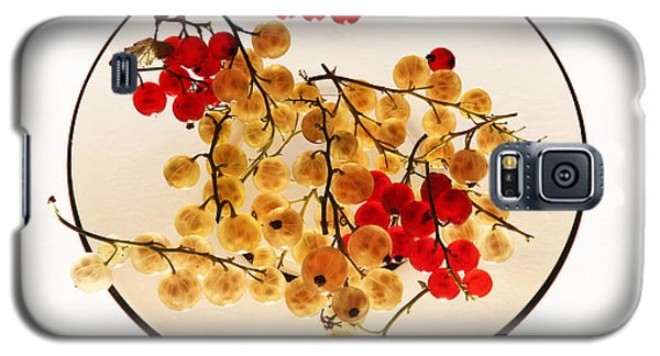 Currants On A Plate Galaxy S5 Case